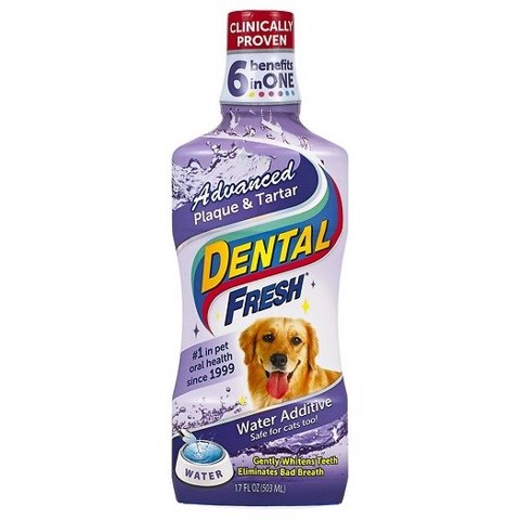 Dental Fresh 17oz Advanced Plaque & Tartar (503ml)