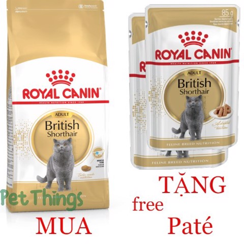 Combo Royal Canin British Shorthair 2kg + 2 British Shorthair 85g