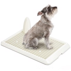 Catidea Dog tray Lavatory No.4 size X-Large