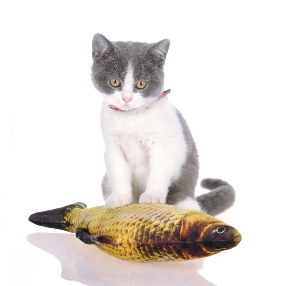 Cá nhồi catnip 60cm