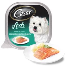 Cesar Fish Salmon & Potato 100g