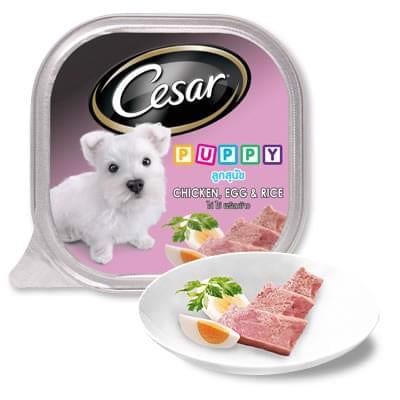 Cesar Puppy Chicken, Egg & Rice 100g