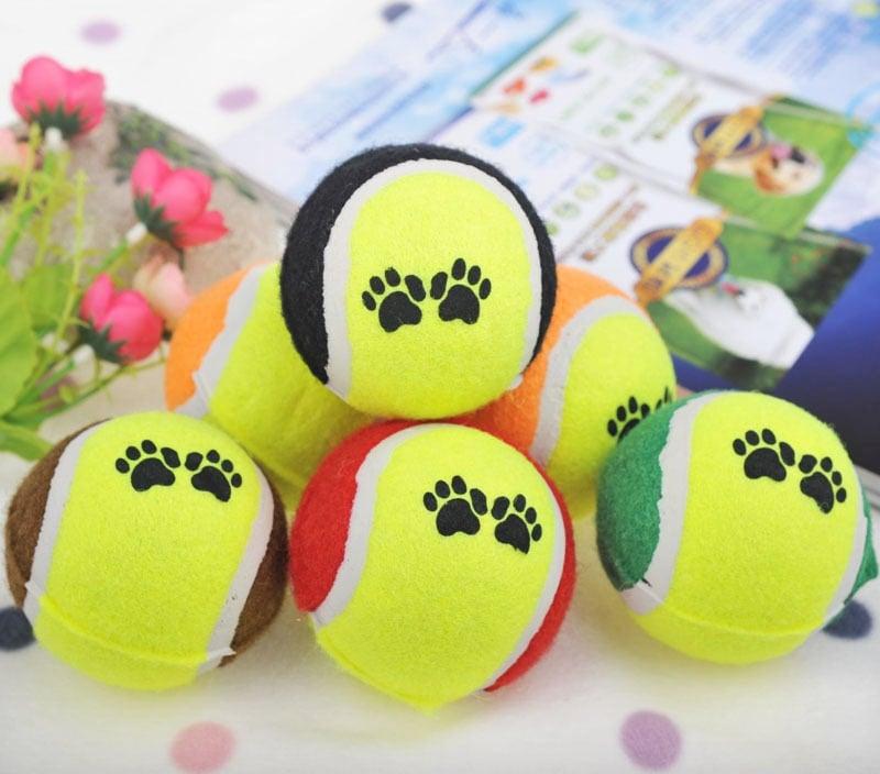 Banh tennis cho chó
