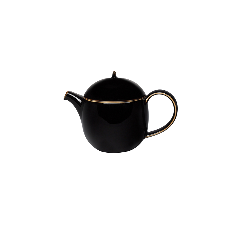 STUDIO TENMOKU - 0.4L TEAPOT WITH INFUSER (BLACK)