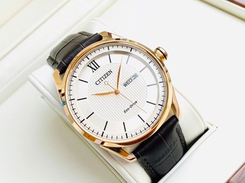 Citizen Eco-Drive AW0082-19A