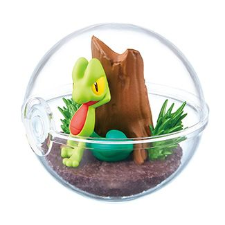pokemon shop bán figure Pokemon Terrarium Collection 6 - Treecko (Kimori) chính hãng