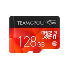 TEAM GROUP SDHC/SDXC UHS-I 256GB