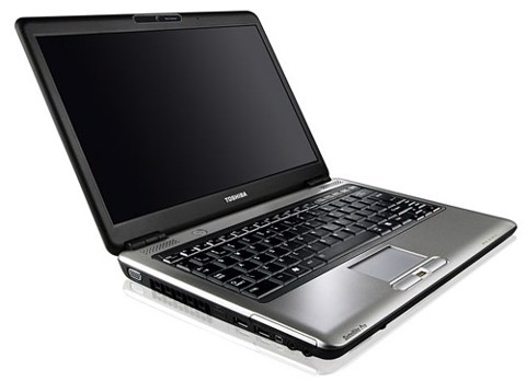 TOSHIBA SATELLITE L300-1EF