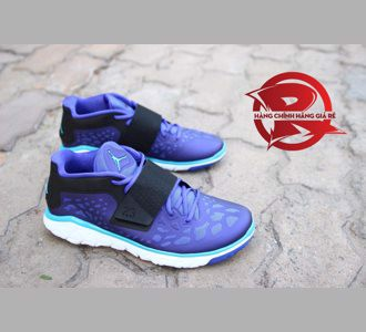Giày Jordan Flight Flex Trainer 2