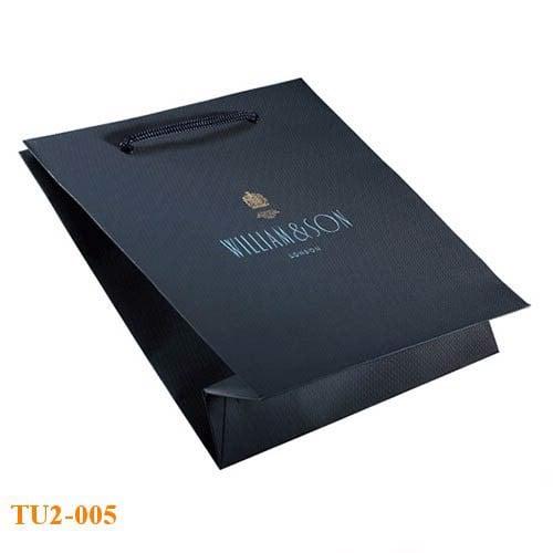 Túi giấy màu xanh đẹp