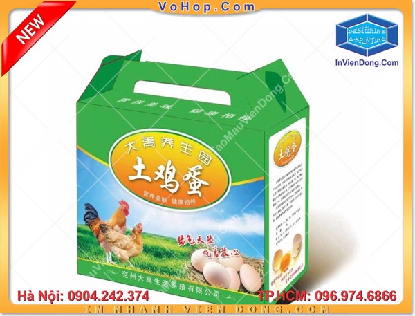 In vỏ hộp giấy carton