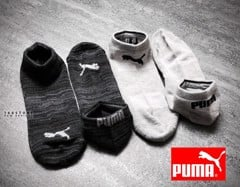 PMA Men's Low Cut All Sport Socks