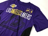 LeBron James #23 Los Angeles Lakers Purple Quick Dry T-shirt By UNK NBA