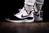 Nike LeBron Witness 3 Concord