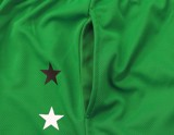Boston Celtics Green Team Color 5 Star Power Mesh Jersey Shorts By UNK NBA (Real/New)