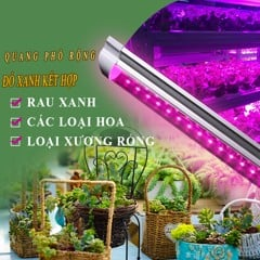 ĐÈN LED CHO RAU (VEGETABLES LED 18W)