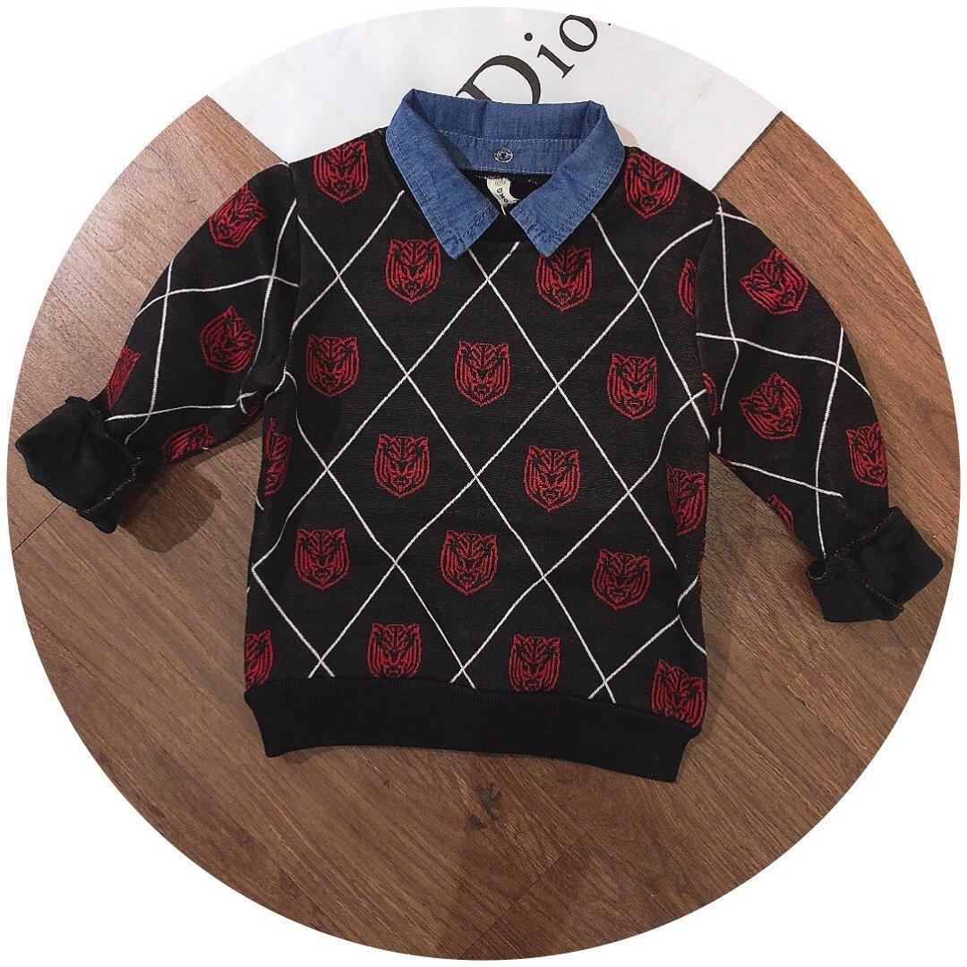Áo nỉ dài tay trẻ em lót lông in hình hoa hồng Q8699