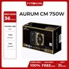 PSU FSP AURUM CM 750W 80 PLUS GOLD