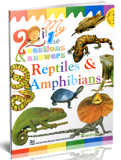 My 1 ST Questions & Answers - Reptiles & Amphibians