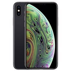 iPhone XS Max 256G World