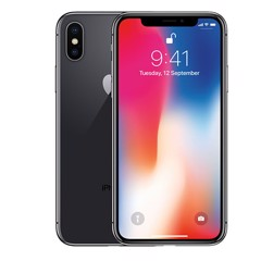iPhone X 256G World