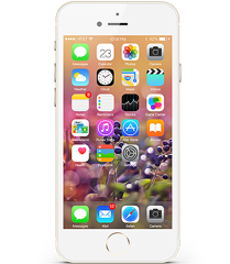 iPhone 6S 16G (A)