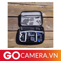 Denali - GoPro Travel Case