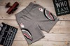 Shorts Side Shark Double Knit Sweat Gray / Black