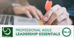 Khoá học Professional Agile Leadership Essential (PAL-E)