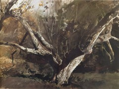 Grimes Golden by Andrew Wyeth