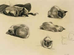 Cat Study by Edward Hopper