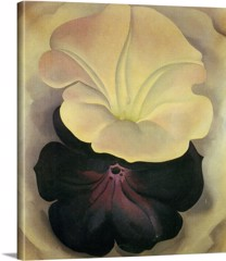 Untitled (Purple And White Petunias) by Georgia O Keeffe