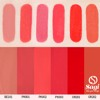 Son Etude House Matte Chic - RD303