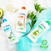 Sữa Dưỡng Thể St.Ives Body Lotion