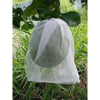 Bao Trái Bưởi Dạng Lưới 32*40 cm