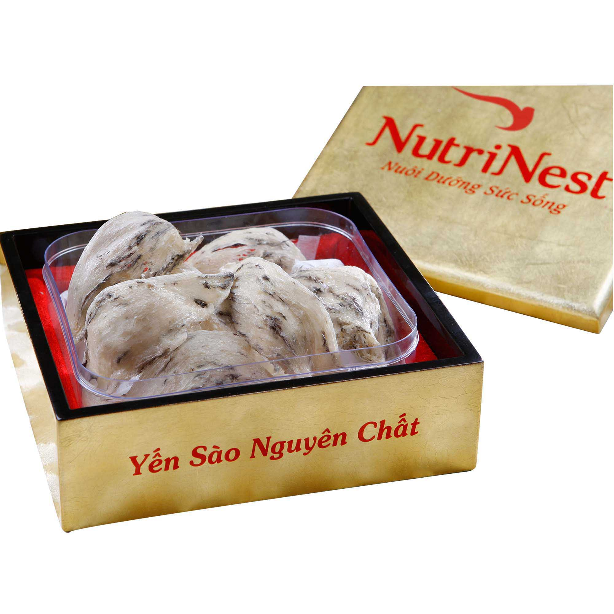 Original Bird's Nest With Feather 50g