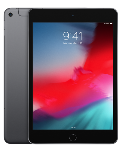 iPad mini 2019 Wi-Fi + Cellular 256GB