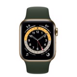 Apple Watch Series 6 GPS+Cellular 40mm (Gold Stainless Steel Case - Cyprus Green Sport Band)- Đang có hàng