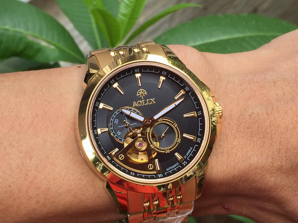 Đồng hồ nam tự động chính hãng Aolix AL 3042GK-D