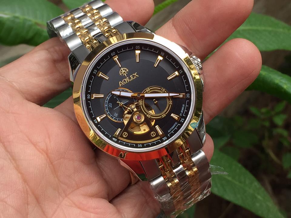 Đồng hồ nam tự động chính hãng Aolix AL 3042GSK-D
