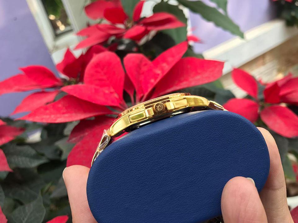 Đồng hồ nam chính hãng aolix AL7036GK-D