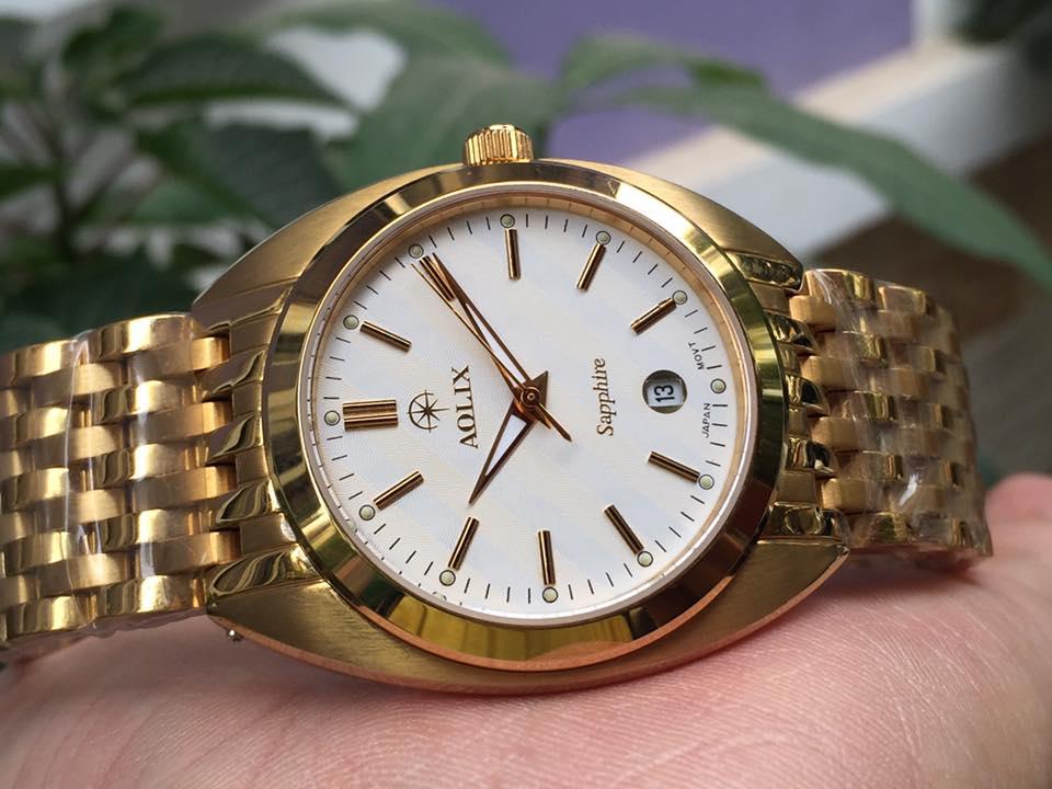 Đồng hồ nam chính hãng Aolix AL9081GK-T