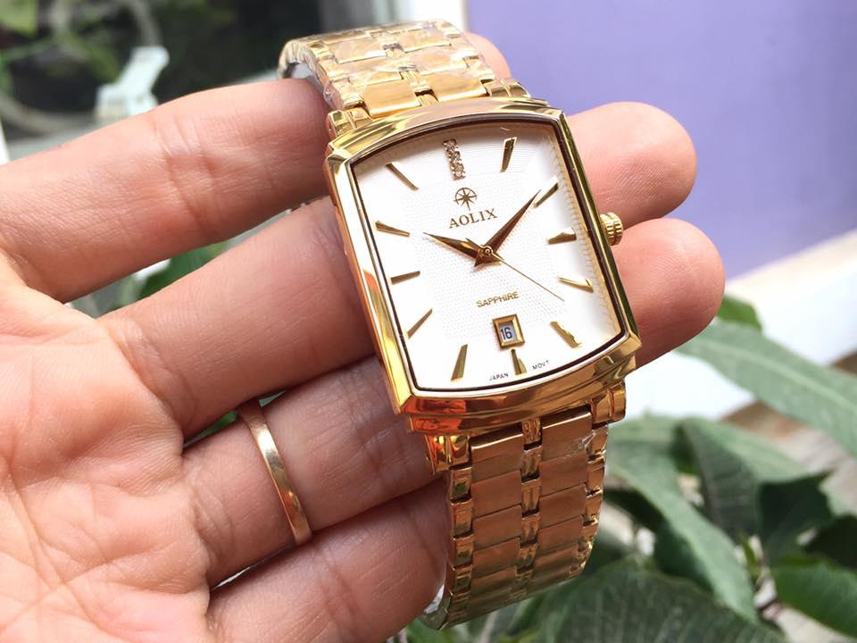 Đồng hồ nam chính hãng Aolix AL9099GK-T