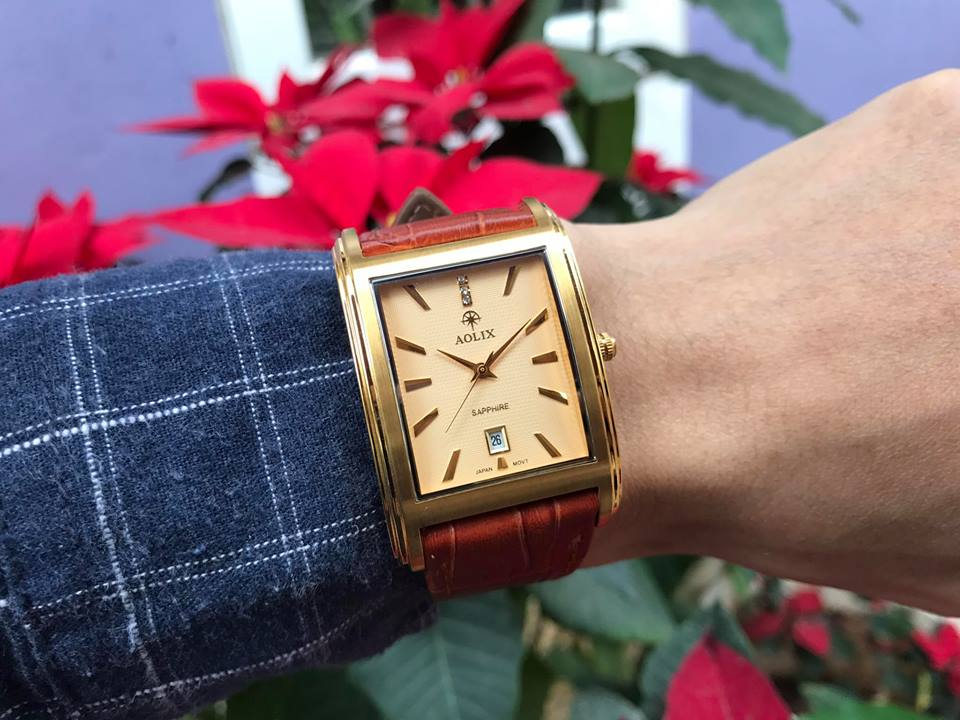 Đồng hồ nam chính hãng Aolix aolix AL9120GK-GL-V