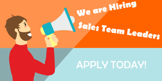 Team Leader - Sales MT