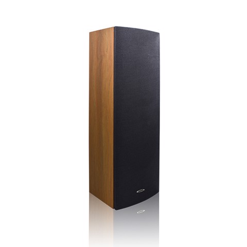 DSP203N IP Network Column Speaker