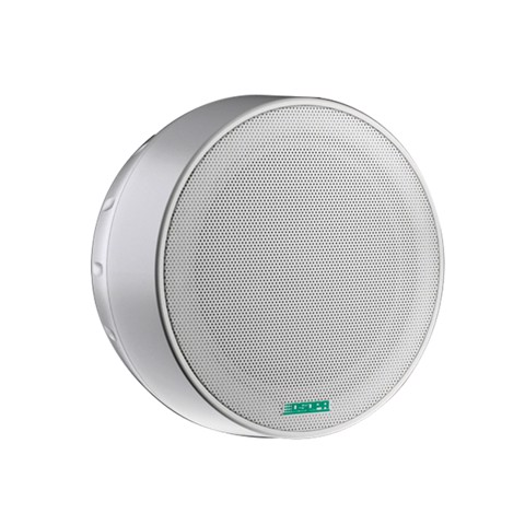 DSP5311 Surface Mount Ceiling Speaker