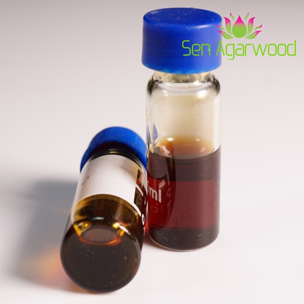 Powerful Benefits Of Agarwood Oil You Should Know About