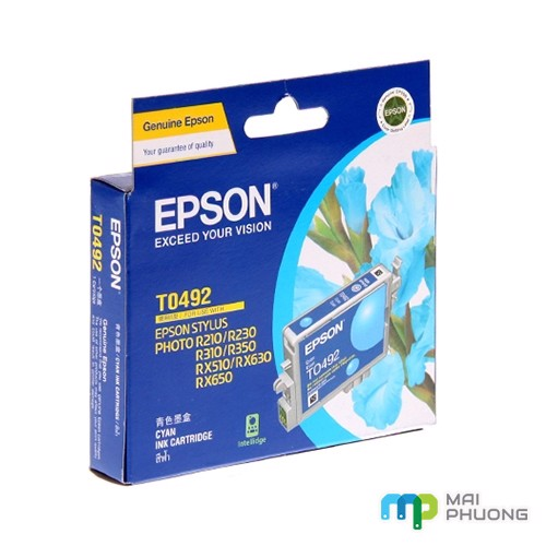 Mực In Epson T049290