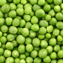 dau ha lan green pea